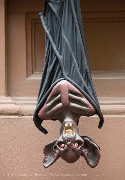 Halloween decorations 2015 5