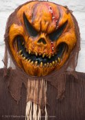 Halloween decorations 2015 17