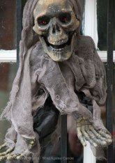 Halloween decorations 2015 22