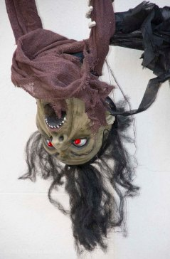 Halloween decorations 2015 31