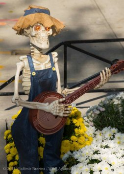 Halloween decorations 2015 32