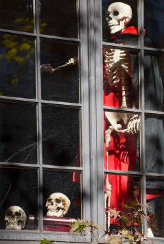 Halloween decorations 2015 33