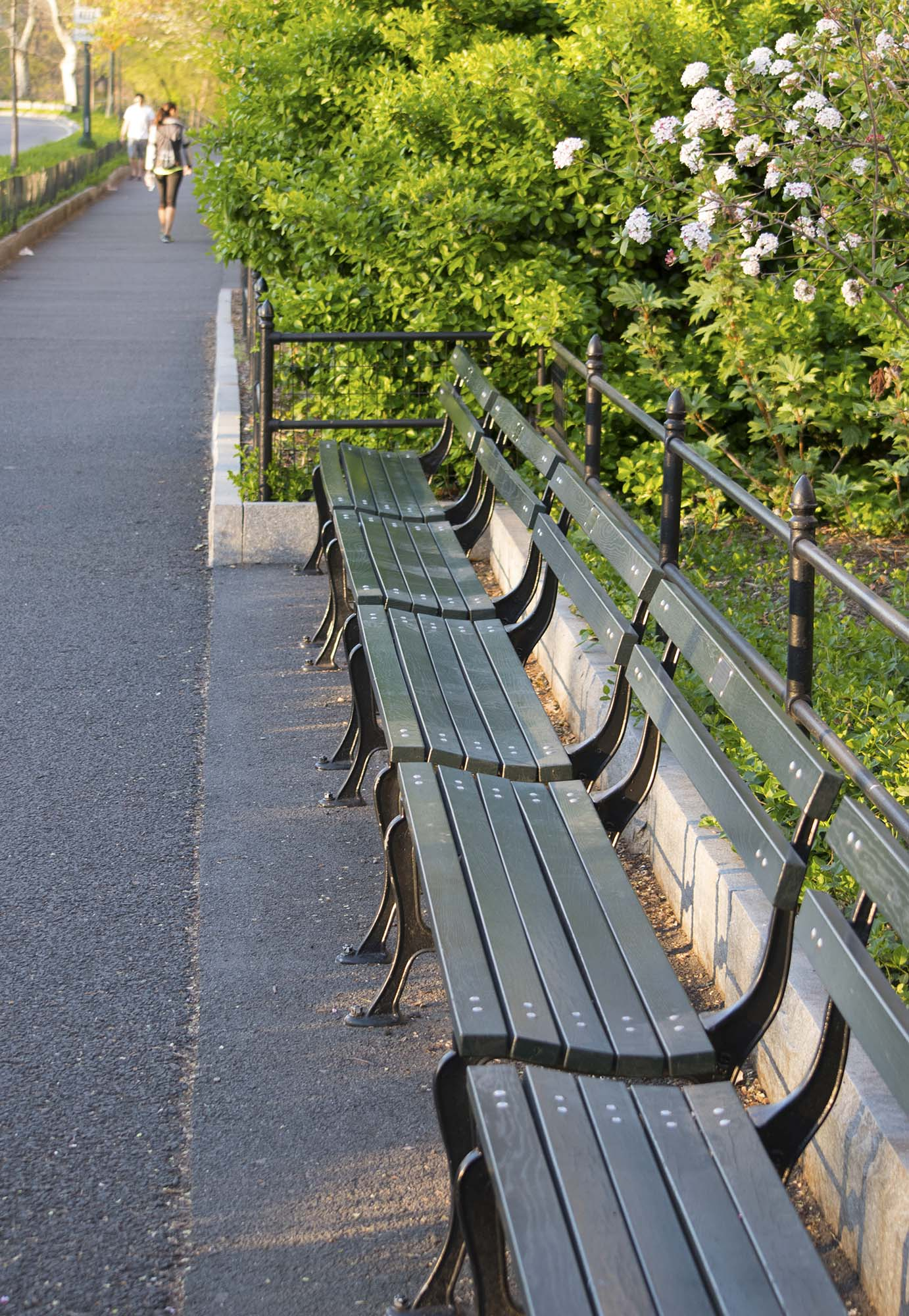 Park Bench Sentiments Wind Against Current